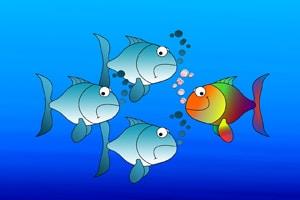 Graue schlecht gelaunte Fische, ein bunter fröhlicher Fisch